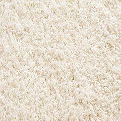 Produits d'entretien pour tapis et moquettes