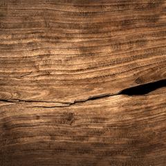 Solution d'entretien et de réparation du bois