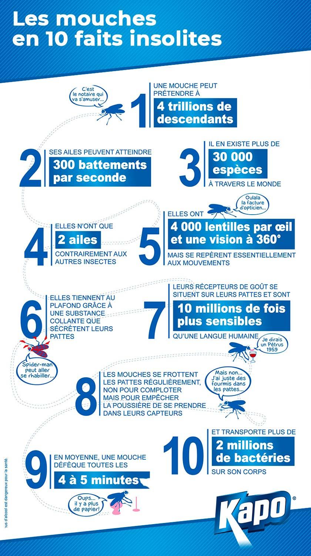 Infographie : 10 faits insolites sur les mouches