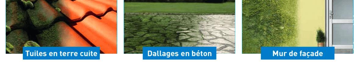 Le Destructeur de dépôts verts est efficace sur tuiles en terre cuite, dallages en béton, murs de façade...